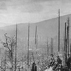 Logging in the Cascade Mountains, near Seattle